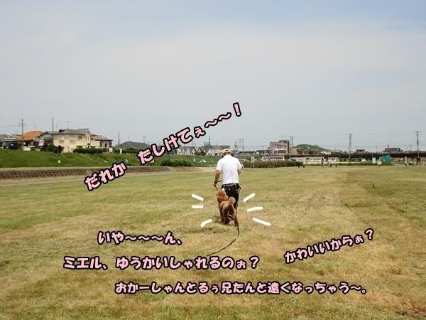201205168387ab.jpg