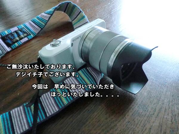 201206158766.jpg