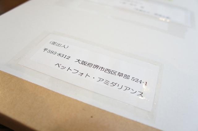 201206193703.jpg