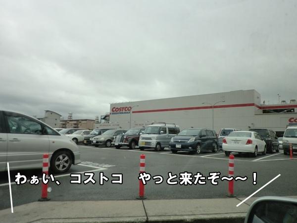 201206208791.jpg