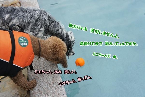 201206243820.jpg
