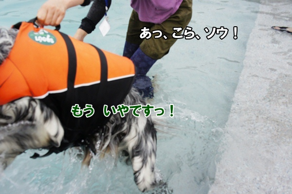 201206243835.jpg