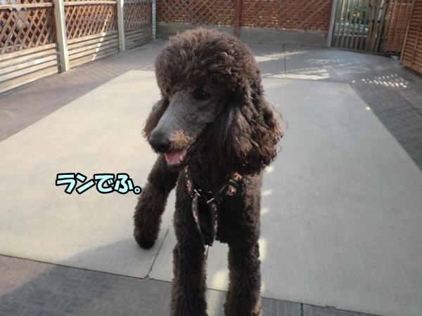 CIMG007620121114.jpg