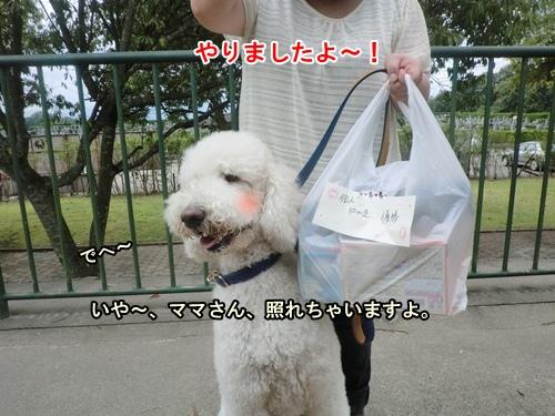 CIMG012220120927.jpg