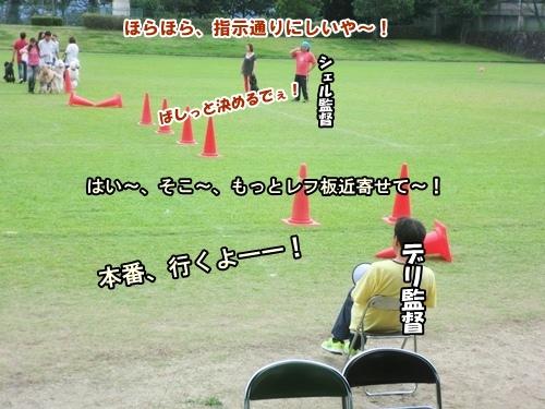 CIMG013720120929.jpg