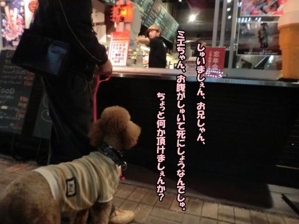 CIMG015220121124.jpg