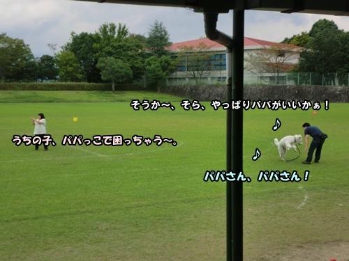 CIMG019120120929.jpg