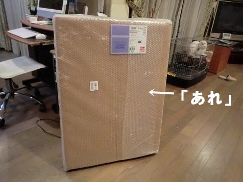 CIMG4525.jpg