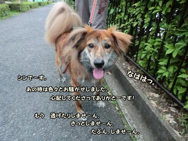 CIMG925920120707.jpg