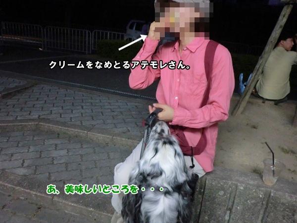 CIMG977720120810.jpg
