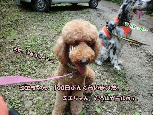 CIMG981820120917.jpg