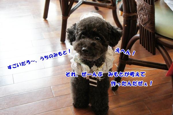 DSC0511520120814.jpg