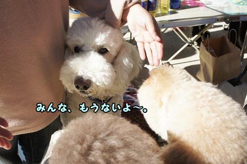 DSC0640120121127.jpg