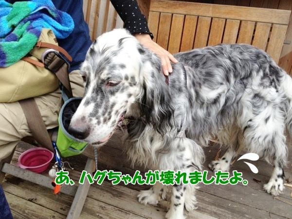 fc2blog_20120902225441d19A.jpg