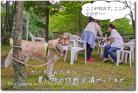 DSC_0225h1.jpg