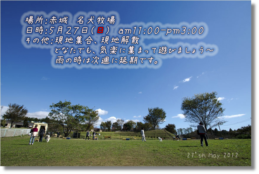 DSC_0634-2f1.jpg