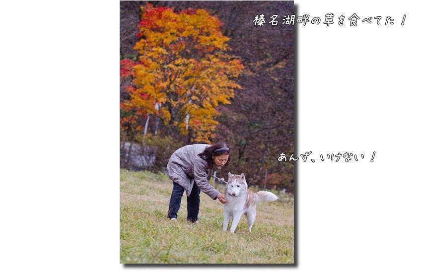 DSC_0646k1.png