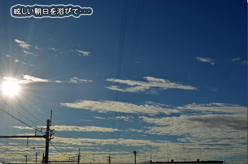 DSC_1335.jpg