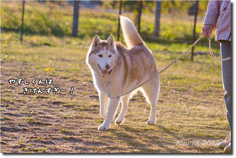 DSC_1476k1.jpg