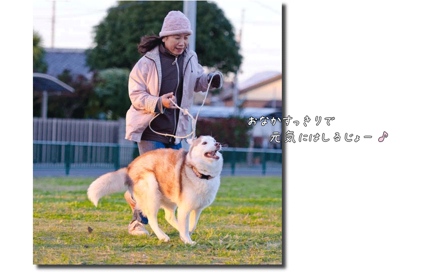 DSC_2003k1.png