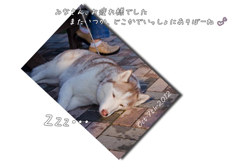 DSC_2734j1.png