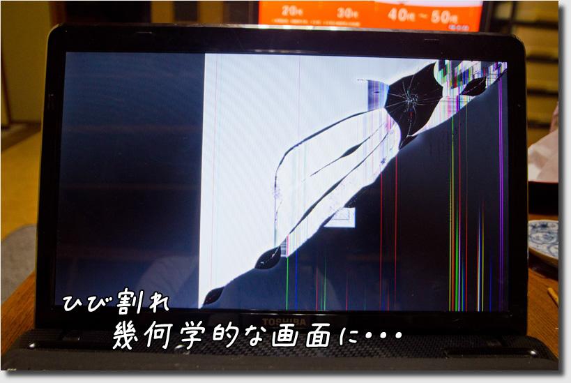 DSC_3358h1.jpg