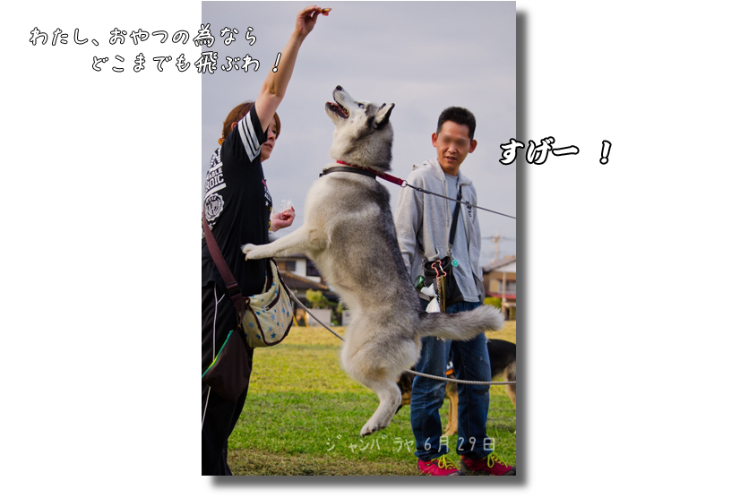 DSC_3568g1.jpg