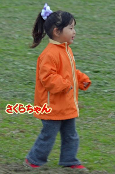 DSC_5276-16.jpg