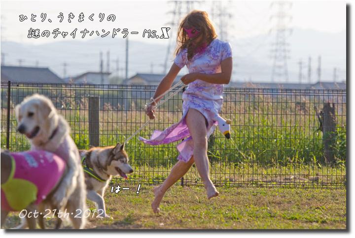 DSC_5919j1.jpg