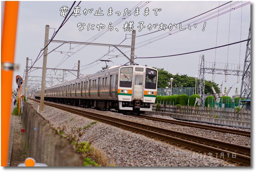 DSC_6029g1.jpg