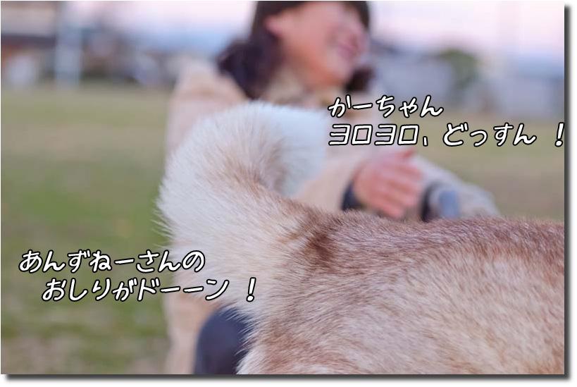 DSC_6261k1.jpg