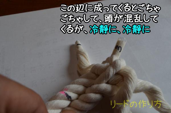 DSC_6957e.jpg