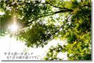 DSC_7343f1.jpg