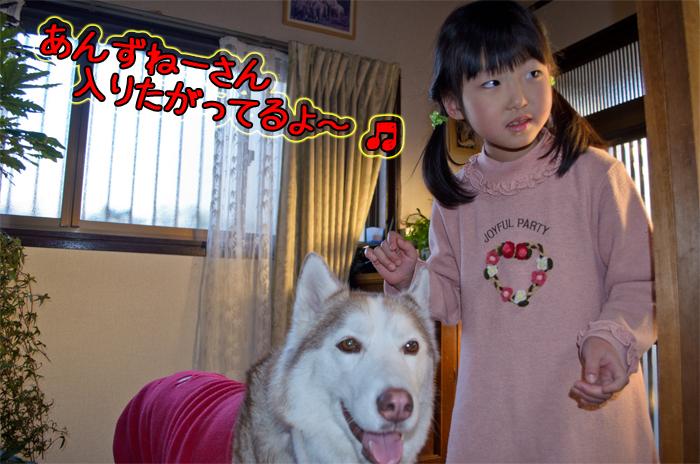 DSC_7589d.jpg