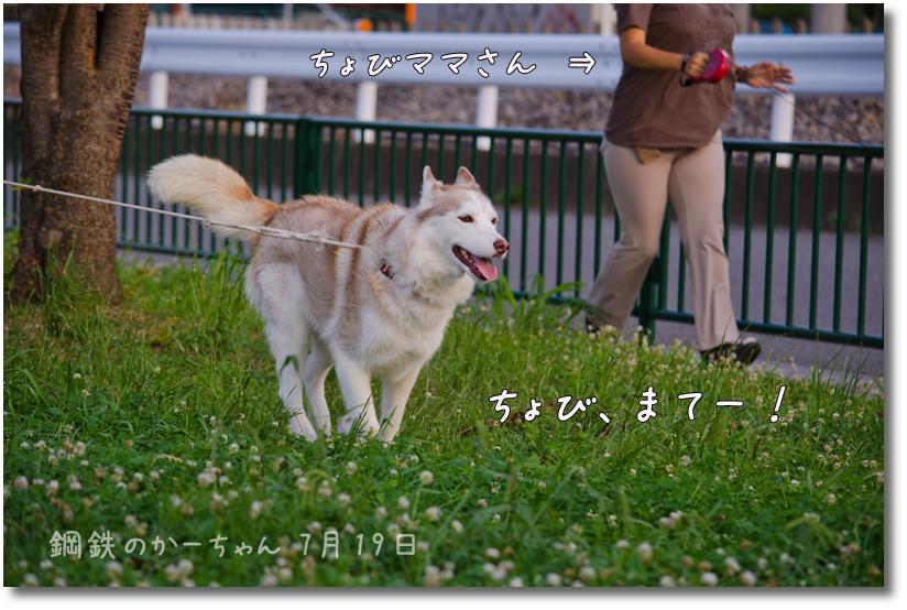DSC_8401g1.jpg
