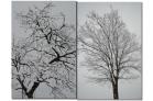 (1)広場に立っている木にも雪が積もっています~♪DSC_8562f.png