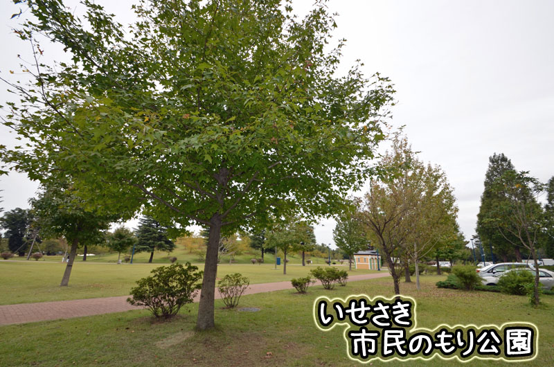 DSC_8625.jpg