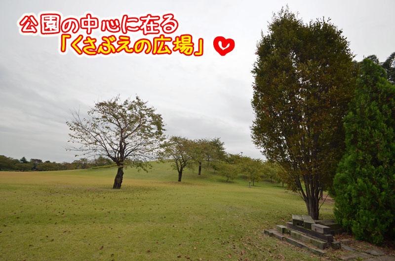 DSC_8683.jpg