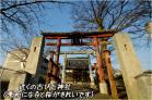 (9)近くの神社(二柱神社)~♪DSC_8819f.jpg