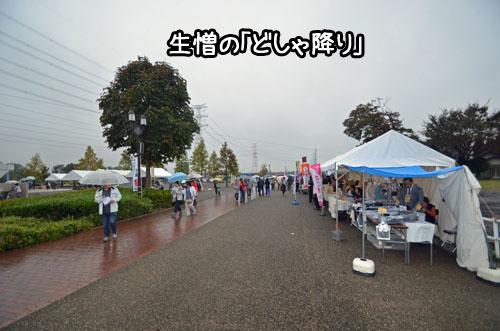 DSC_8996.jpg