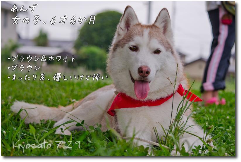 DSC_9409g1.jpg