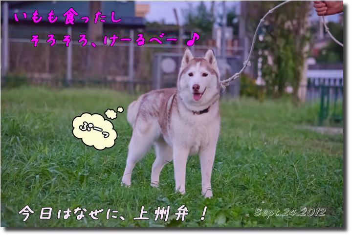 DSC_9667h2.jpg