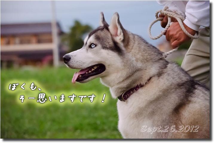 DSC_9869h1.jpg