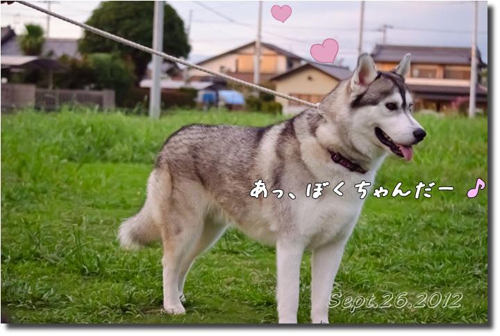 DSC_9983h1.jpg