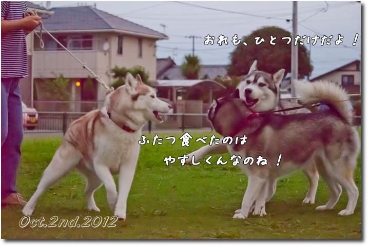 _DSC1128j1.jpg