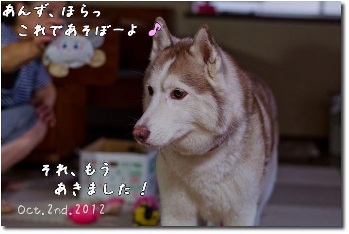 _DSC1189j1.jpg