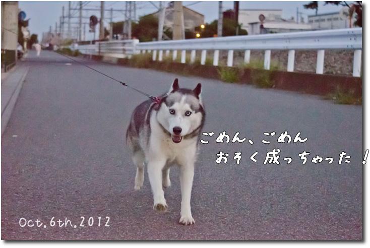 _DSC1631j1.jpg