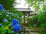shifuku_sanmon