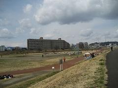 広瀬川流域2012.04.01_4