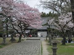 薬師堂2012.4.22-2